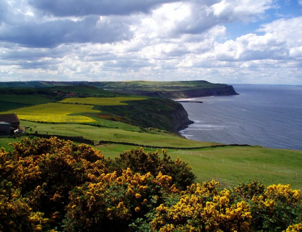 Wandelvakantie Engeland - North York Moors National Park